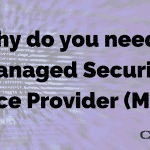 Why do you need a Managed Security Service Provider (MSSP)?