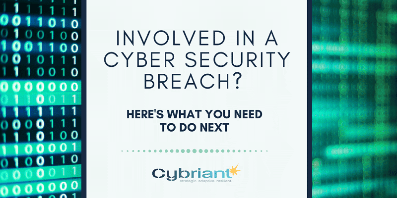 Involved in a Cyber Security Breach? Here's What You Need to Do Next