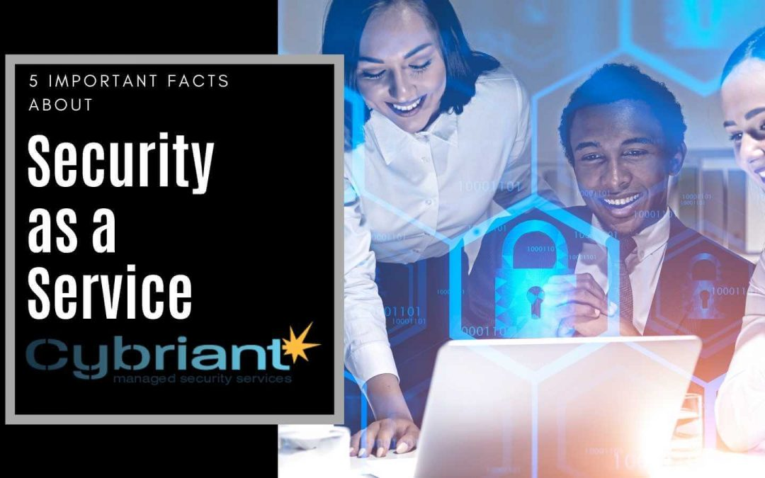 5 Important Facts about Security as a Service
