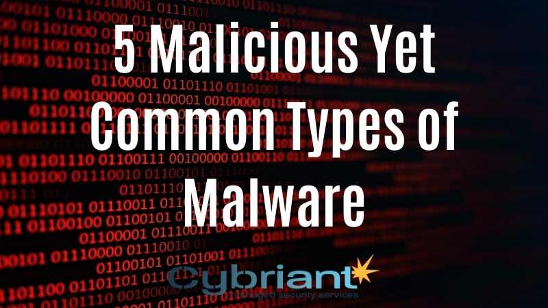 5 Malicious Yet Common Types of Malware